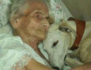vecchia con cane
